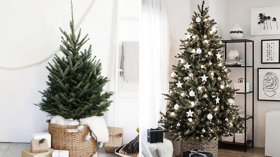 is it time to replace your old christmas tree rl - Old Christmas Tree
