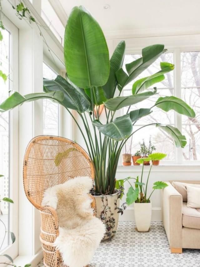 IMAGE Interior Design Ideas & Expert-Approved Ways To Achieve Organic Modern Decor | RL