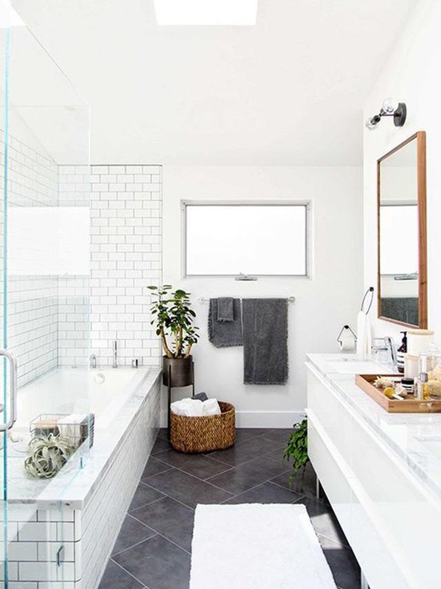 Image jhaye ramirez via pinterest read 5 plants perfect for the bathroom