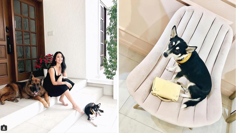Heart Evangelista Shows How A Home Can Be Pet Friendly But