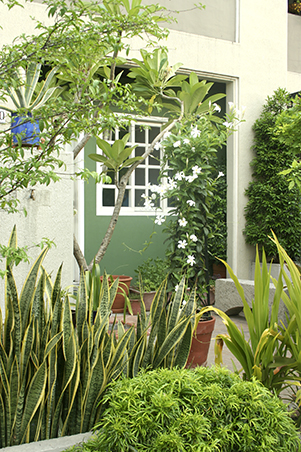5 Small Space Gardening Tips