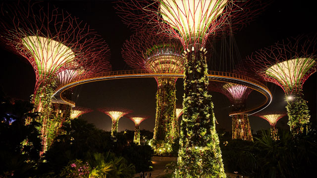 Here's a Closer Look at Singapore After Dark