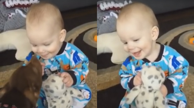 This Made Our Day: You Have to Hear This Baby's 'Evil' Laugh