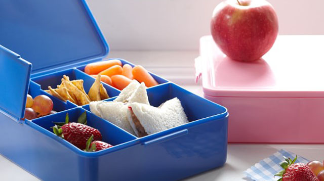 Your Ultimate Guide for Choosing the Best Lunch Box for Kids