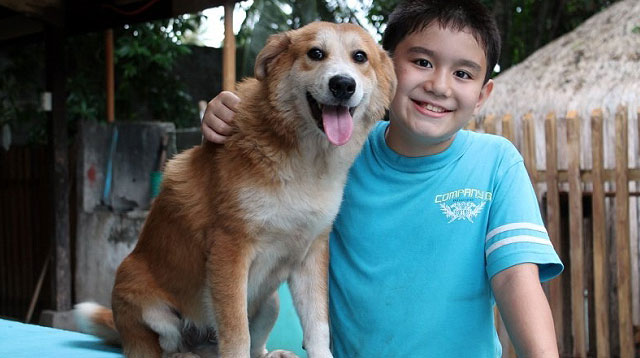 This Animal Shelter Is A Dream Come True for This 10-year-old