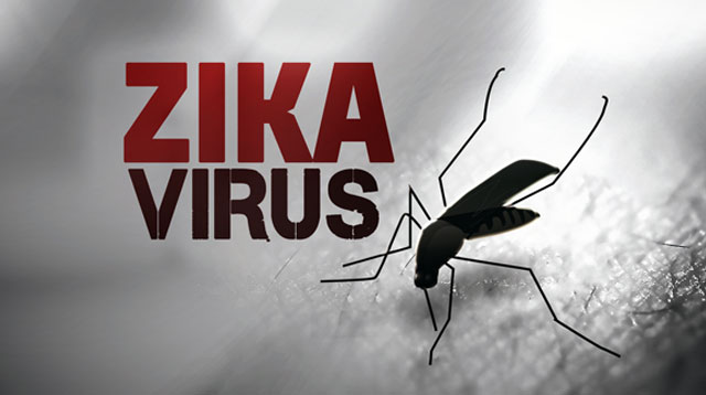 How You Can Help Prevent the Zika Virus From Spreading in PH