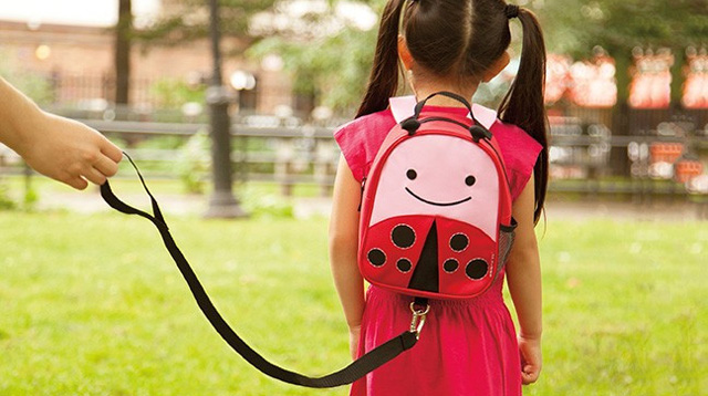 Child Harnesses and Leashes: Yay or Nay?