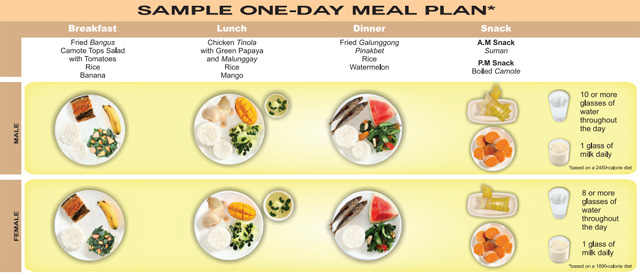 This is what your plate should look like during meals sp this is what your plate should look like during meals forumfinder Choice Image