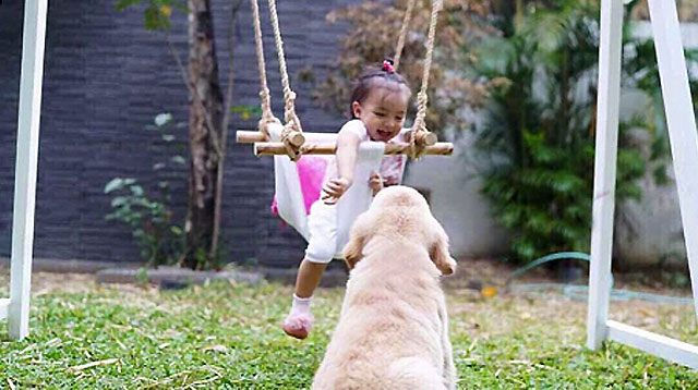 Baby Zia and Dog Amigo's Photo Reminiscent of Marian Rivera's 'Marimar' and Fulgoso