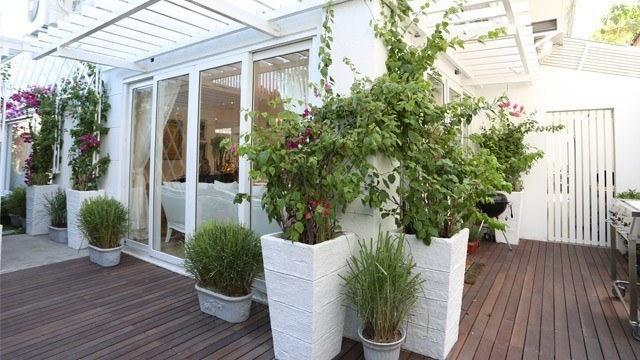 You'll Love Kris Aquino's Bougainvillea Garden