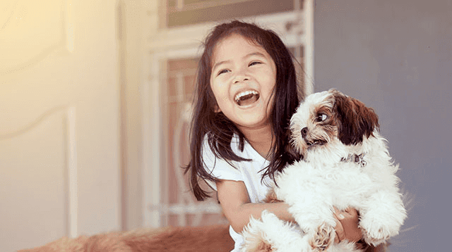 How to Prepare Your Child for His First Pet Dog or Cat