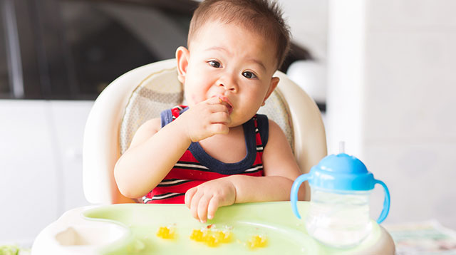 Traditional Weaning or Baby Led? This May Help You Make the Decision