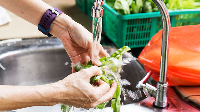 How to Wash Fruits and Vegetables to Avoid E. Coli and Salmonella