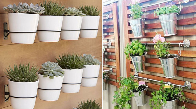 These Photos Will Inspire You To Start A Vertical Garden