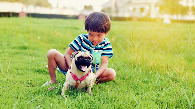 This Vaccine Is Crucial for Your Kids If You Have a Pet Dog at Home