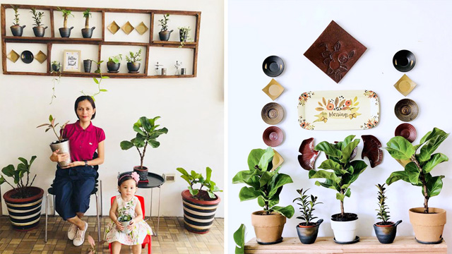 This Homeowner Has Over 200 Plants in Her Home!