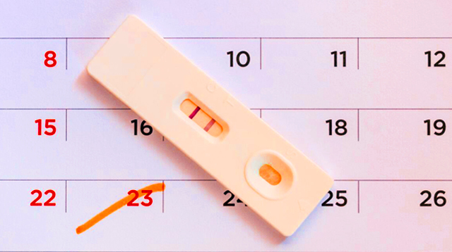 When to Test for Pregnancy to Get Accurate Results (Morning or Night?)