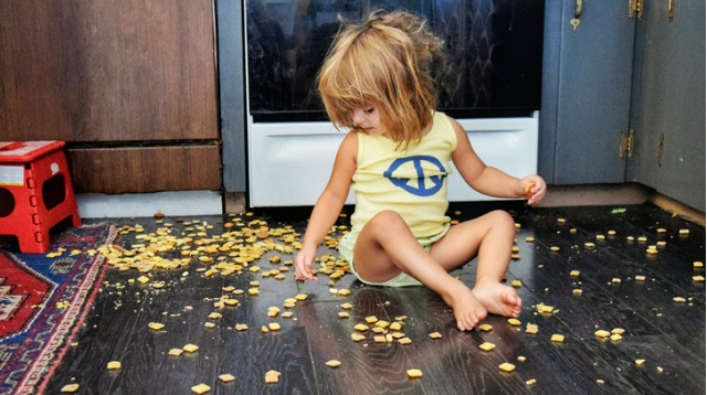 Food Dropped on the Floor Will Pick Up Bacteria, Period