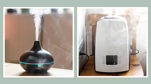 Diffuser vs. Humidifier: Which One is Best for Your Home?