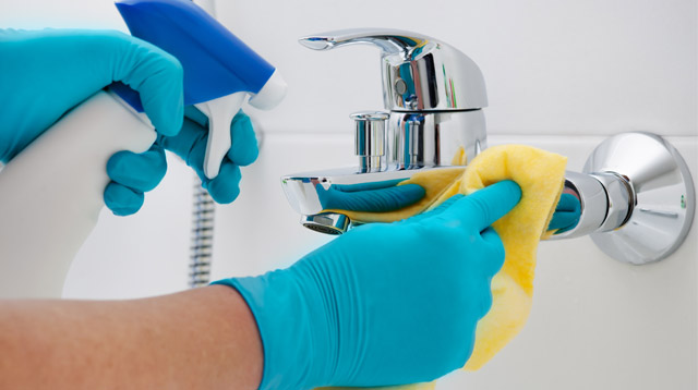 How to Disinfect the Dirtiest Spots in Your Bathroom Correctly!