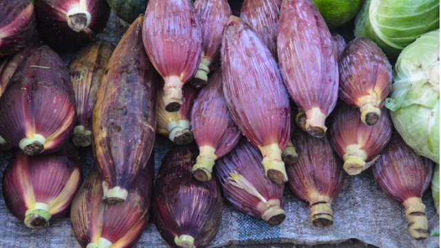 Puso ng Saging: Nutritional Benefits, Storage and Preparation Tips