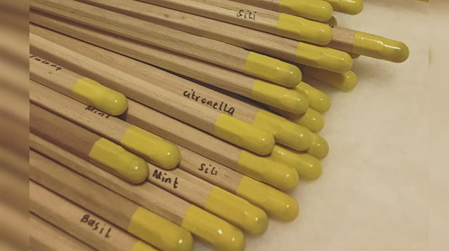 Care to Switch? These Plantable Pencils Teach Your Kids to Care for the Environment
