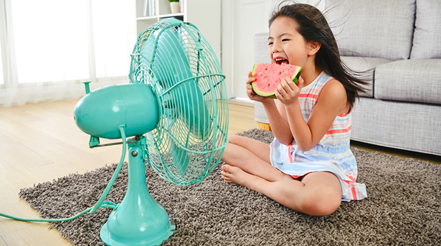 Not All Electric Fans Are Created Equal! 7 Things to Consider When Buying One