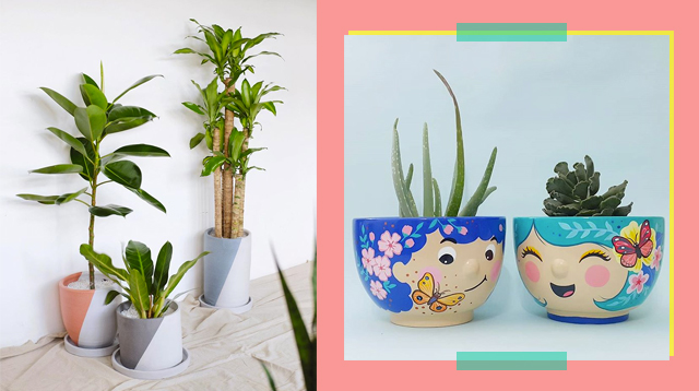 Looking For Planters For Your Container Garden? Visit These 6 Online Stores!