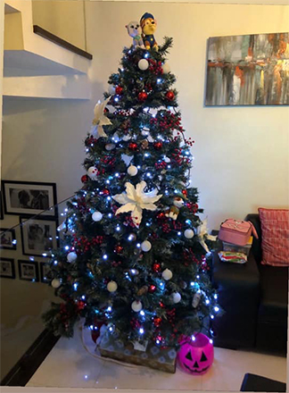 Christmas Trees Ideas That Are Not Boring