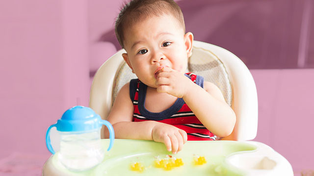 Baby Food For 9 Months And Up: 3 Healthy and Yummy Recipes For Your Adventurous Eater