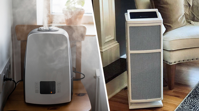 Air Purifier Vs. Humidifier: Which One Can Help With My Cough And Colds?