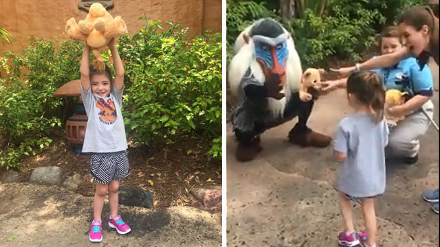 LOOK: The Lion King's Rafiki Helps With Family's Gender Reveal at Disney Park