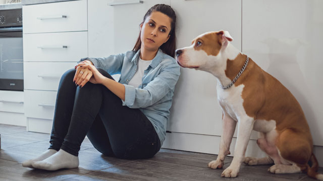Your Dog Can Sense If You're Pregnant Before Anyone Else Does