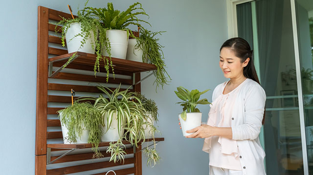 6 Ways To Give Your Home A New Look And Bring In Positive Energy
