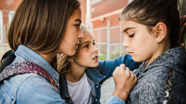 What Are The Causes of Bullying?