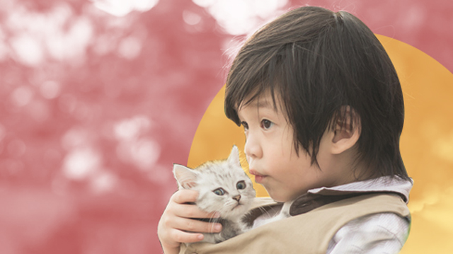 Is Your Child Ready For A Pet? Take This Short Quiz To Find Out!