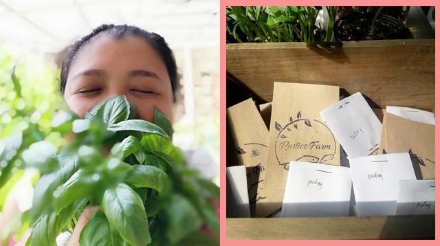 Grow Your Own Food: Pagtanim Ng Gulay, Solusyon Ng Isang Misis Sa Food Supply Ngayong ECQ