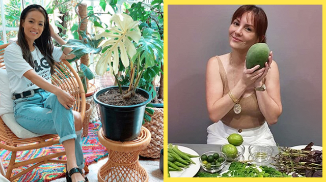 These Celebrity Moms Stay Productive During The Quarantine By Gardening!