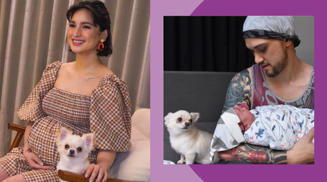 This Explains Why Coleen Garcia's Dog Tamomo Looked 'Tampo' At FurDad Billy And Baby Amari