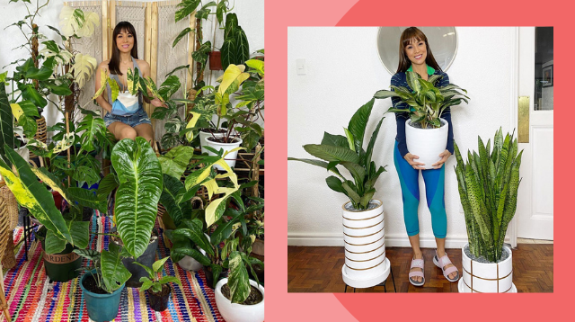 Aubrey Miles Is The Ultimate Plantita! Her Most Expensive Plant Is Worth P300,000