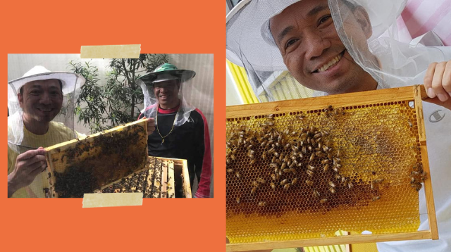 Dad Earns P80,000 Harvesting Pure Honey From His Bee Colony In Metro Manila