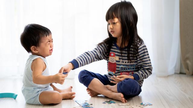 May Payo Ang Eksperto Kapag Naga-Away Ang Mga Anak Dahil Sa Laruan