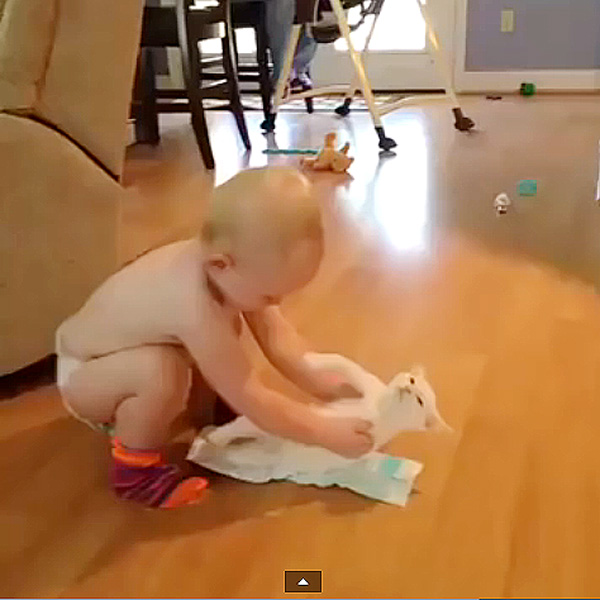 This Made Our Day: A Baby, A Cat, and Diapers