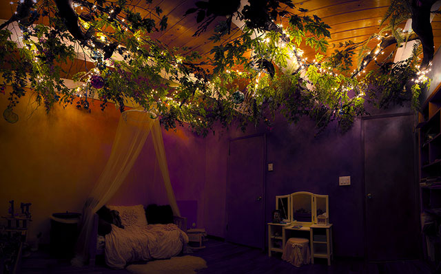 Enchanted Fairytale tree house room 6