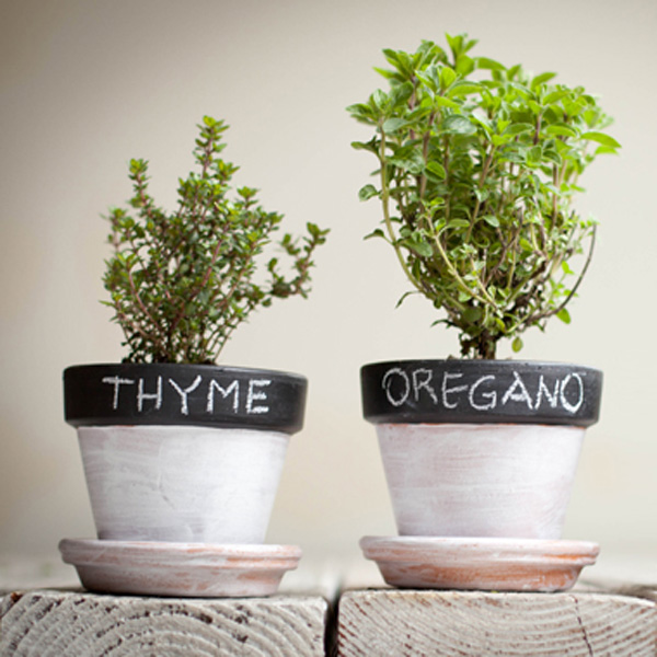Mommy Hack of the Week: Extend the Life of your Herbs
