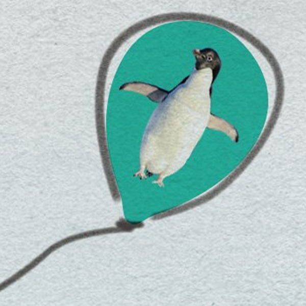 Little Boy Loses His Penguin Balloon and Now It's Sending Him Postcards from Around the World
