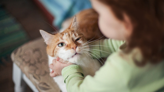 8 Perks Of Giving Your Child A Pet