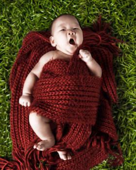 Blow-Up Babies