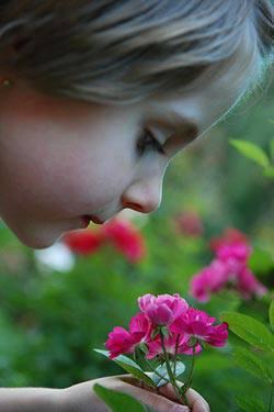 kid smelling flower