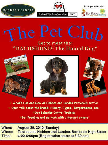 The Pet Club: Get to meet the Dachsund: The Hound Dog